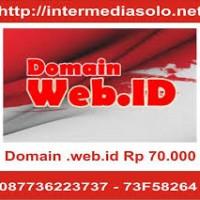 DOmain-WebID-primary