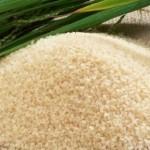Kenaikan harga beras di pasaran disambut gembira oleh para petani di Boyolali