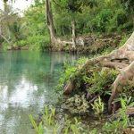 Air Putri DI Pesisir Pantai Campuran Air Tawar dan Laut